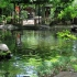 Atago Shrine Tokyo